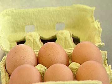 Salmonelas: 80% dos aviários portugueses afectados