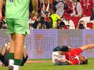 Benfica: Nuno Gomes e Ricardo aptos