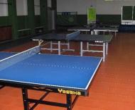 «Novo» Estádio José Gomes: secção de ténis de mesa