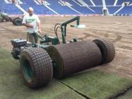 Relvado do FC Porto