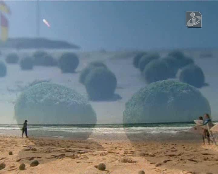 Bolas verdes de algas invadem praia na Austrália