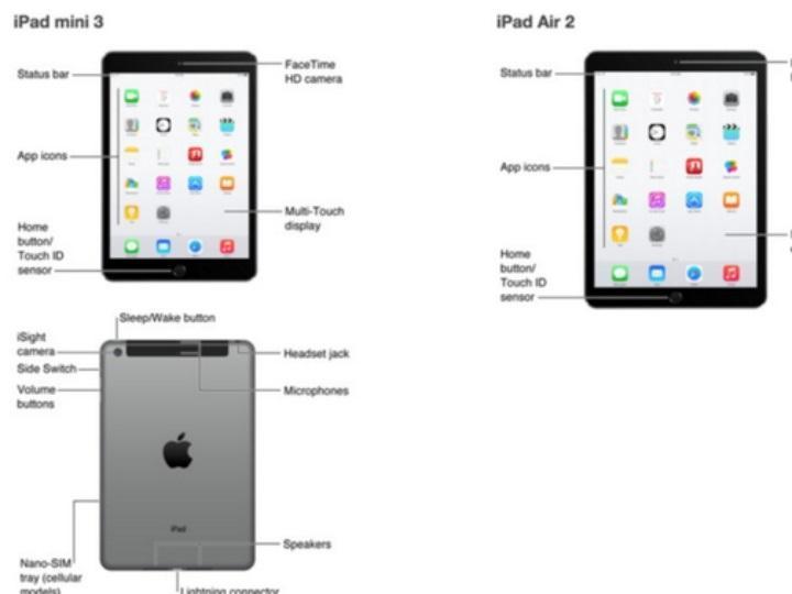 Apple divulga imagens dos novos iPad antes de tempo (Twitter)