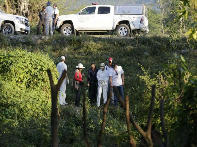 Nova vala comum encontrada no México (REUTERS)