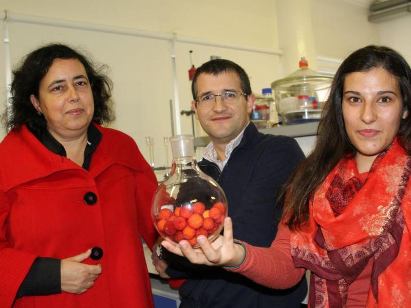 Investigadores Sílvia Rocha Armando Silvestre e Daniela Fonseca (Foto Universidade de Aveiro)