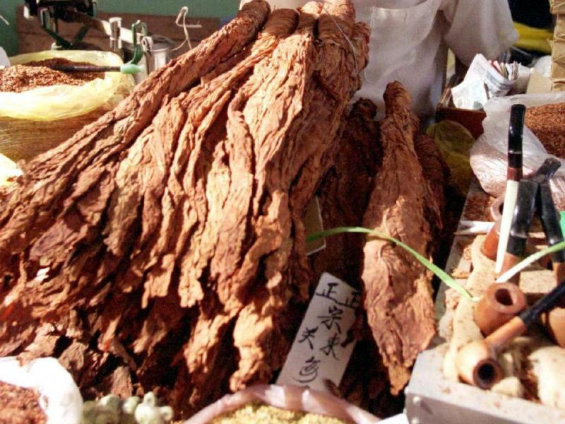 Folha de tabaco (REUTERS)