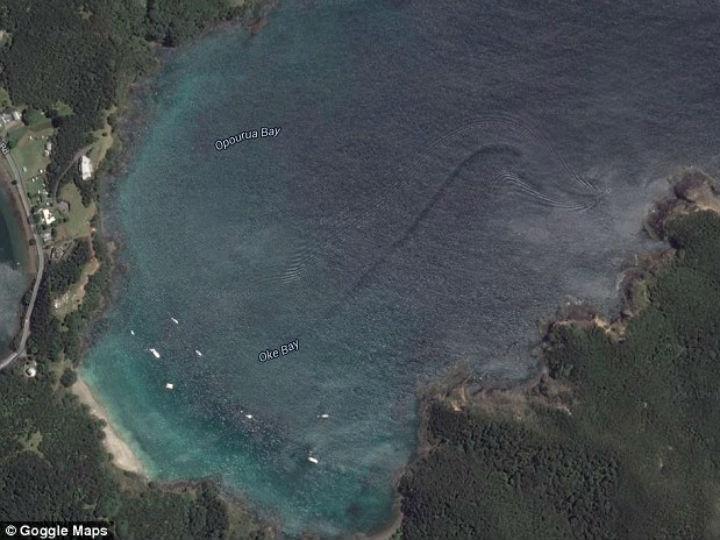 Imagem da baía de Oke, Nova Zelândia, retirada do Google Earth