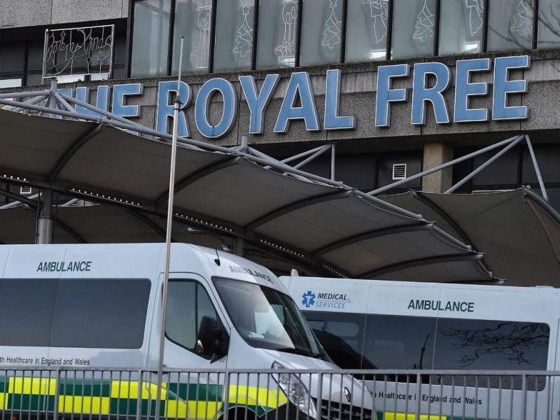 Royal Free Hospital, Londres (LUSA/EPA)