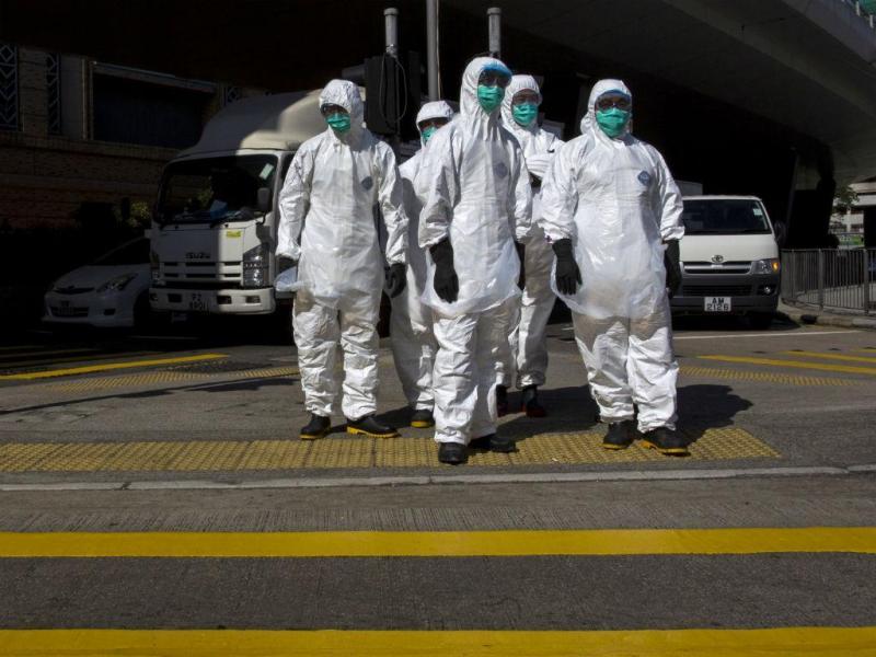 Gripe das Aves [Reuters]
