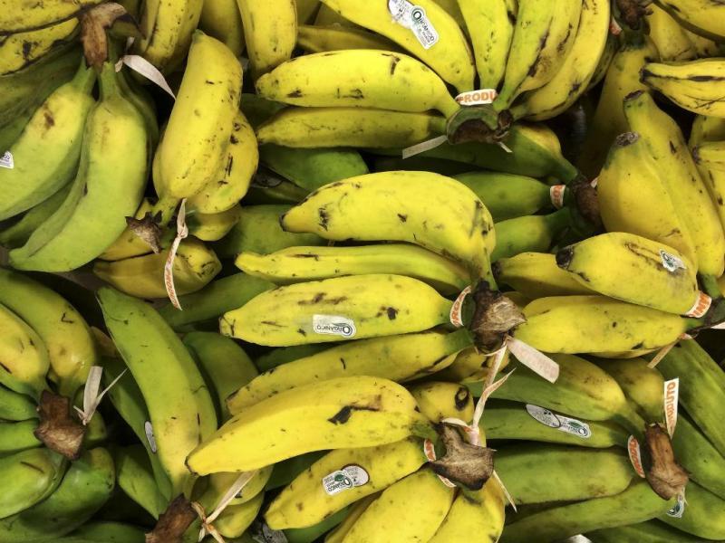 Bananas (REUTERS)