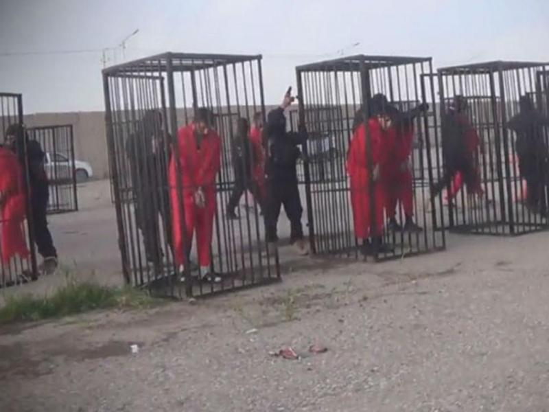 Estado Islâmico divulga imagens de reféns enjaulados (Foto Reprodução Vídeo)