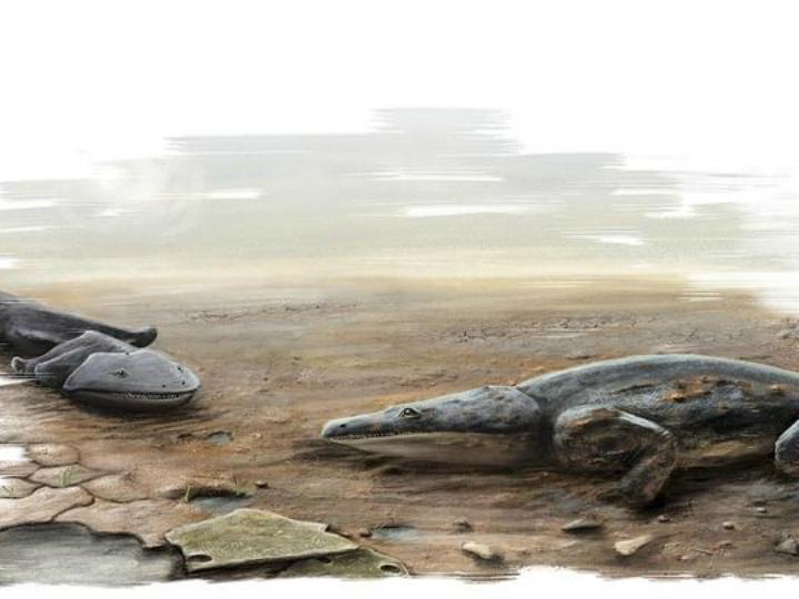 Dinossauro anfíbio com 200 milhões de anos encontrado no Algarve (DR)