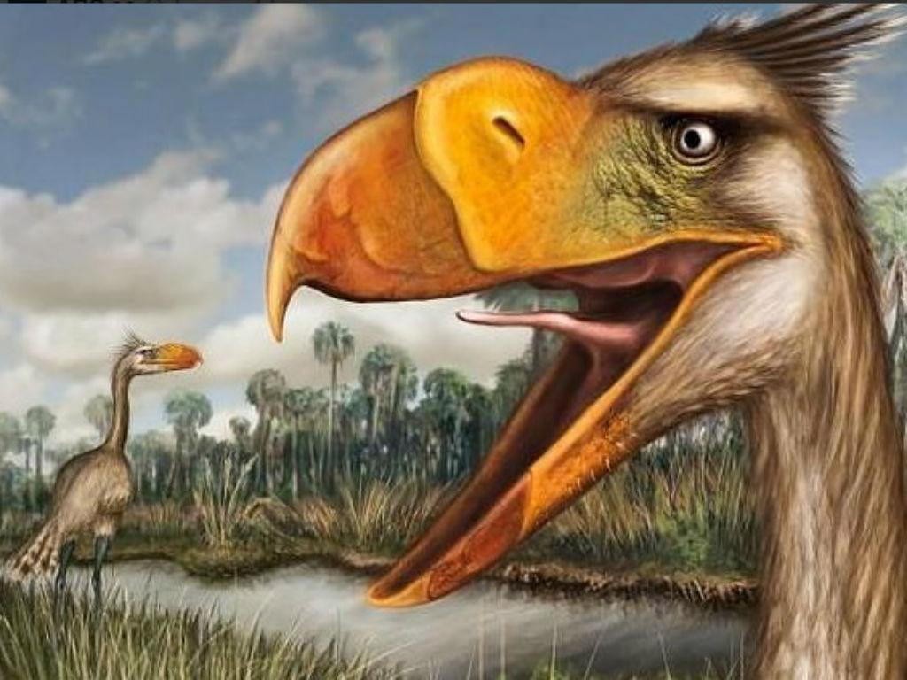 Descoberta nova «ave do terror» [Journal of Vertebrate Paleontology]