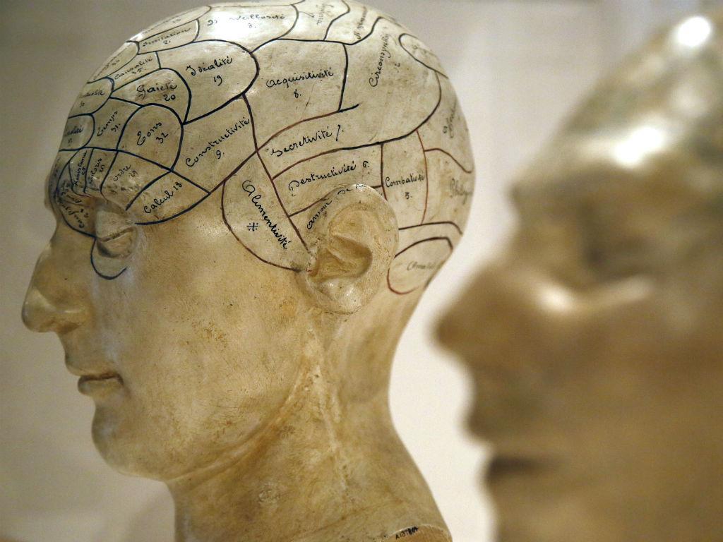 Cérebro [Reuters]