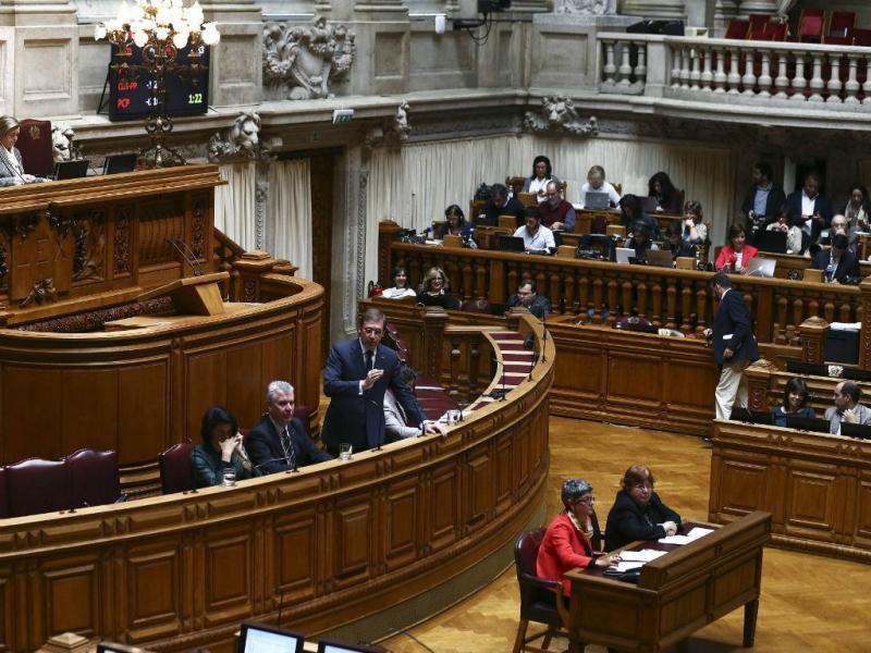 Pedro Passos Coelho no debate quinzenal (LUSA)