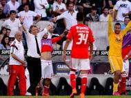 Benfica campeão (Lusa)