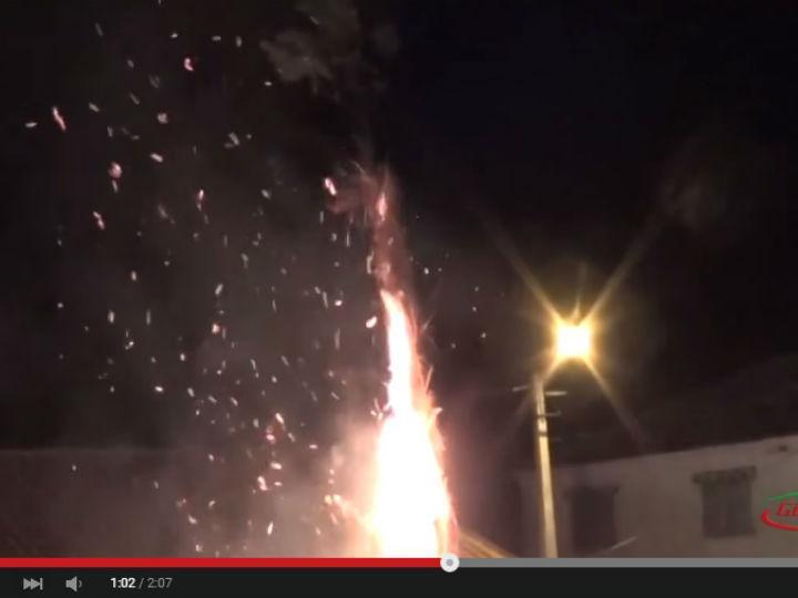 Gato queimado vivo em Vila Flor, Braga