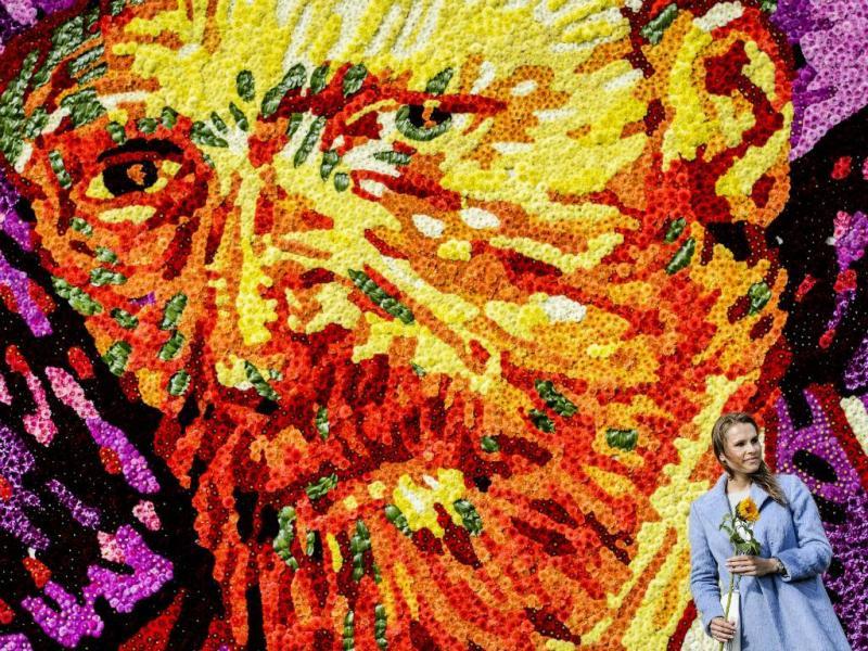 Vincent Van Gogh (Lusa/EPA/REMKO DE WAAL)