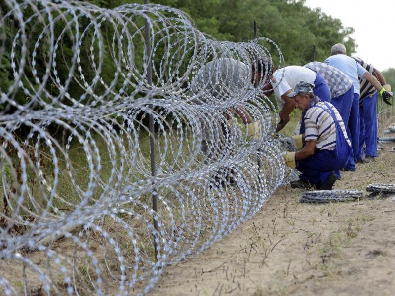 Hungria está a erguer vedação com 175 quilómetros para travar fluxo de migrantes [Lusa]