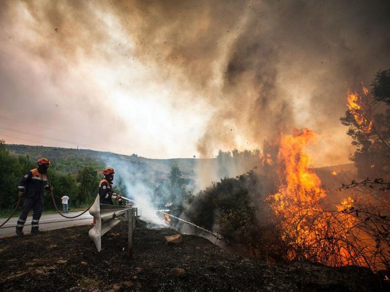 Resultado de imagem para Incêndios cortam A23 em Santarém e em três estradas em Castelo Branco