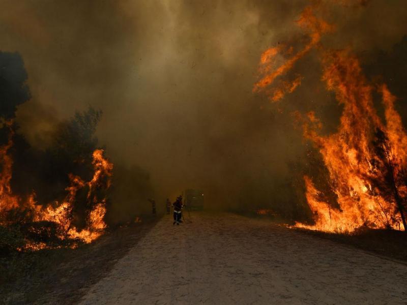 Incêndio [Foto: Lusa]