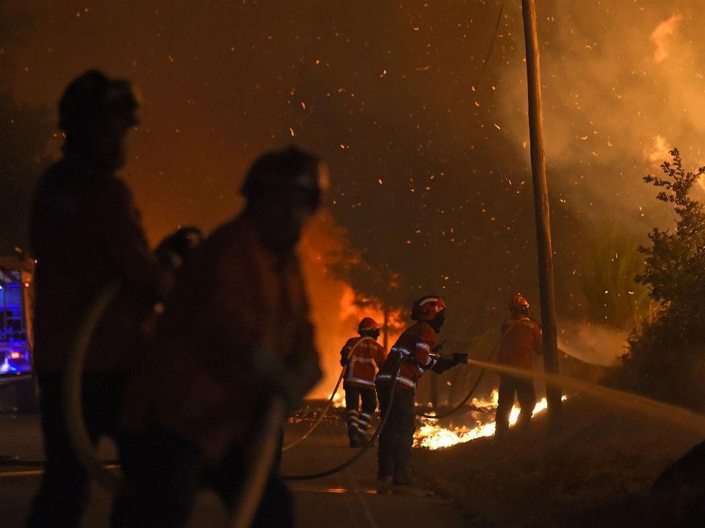 Incêndio florestal (NUNO ANDRÉ FERREIRA/LUSA)