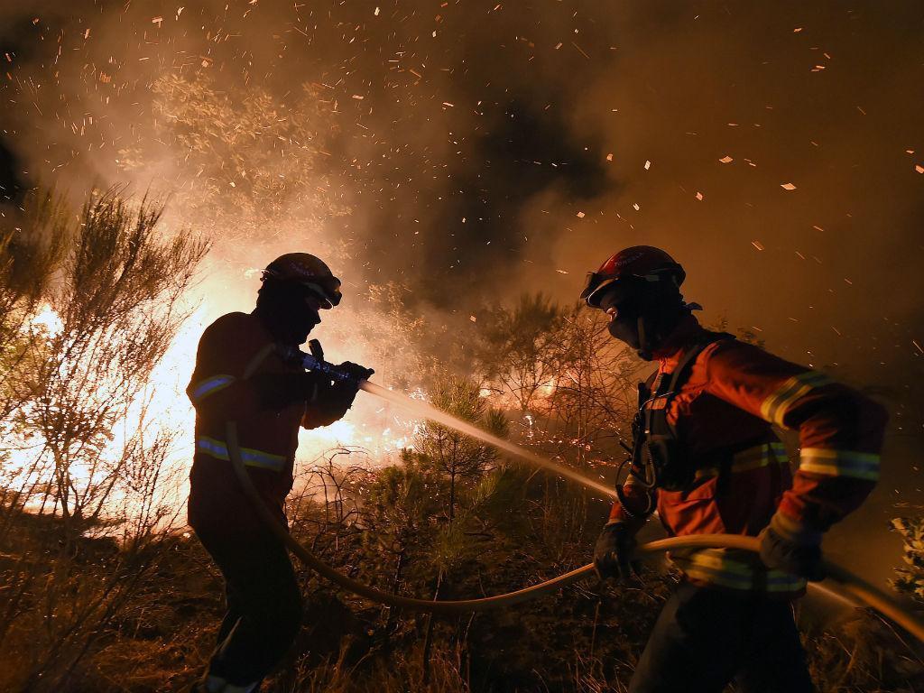 Incêndio florestal em Mangualde (NUNO ANDRÉ FERREIRA/LUSA)
