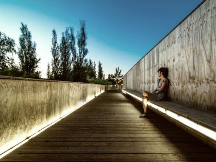 Ponte VLM (foto de João Soares)