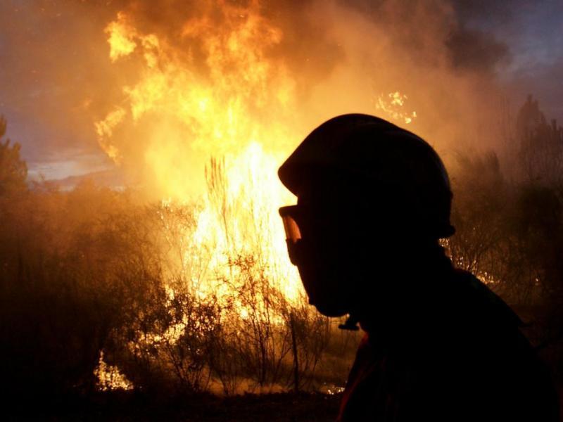 Incêndio de grandes proporções no concelho do Sabugal (Lusa/Miguel Pereira da Silva)