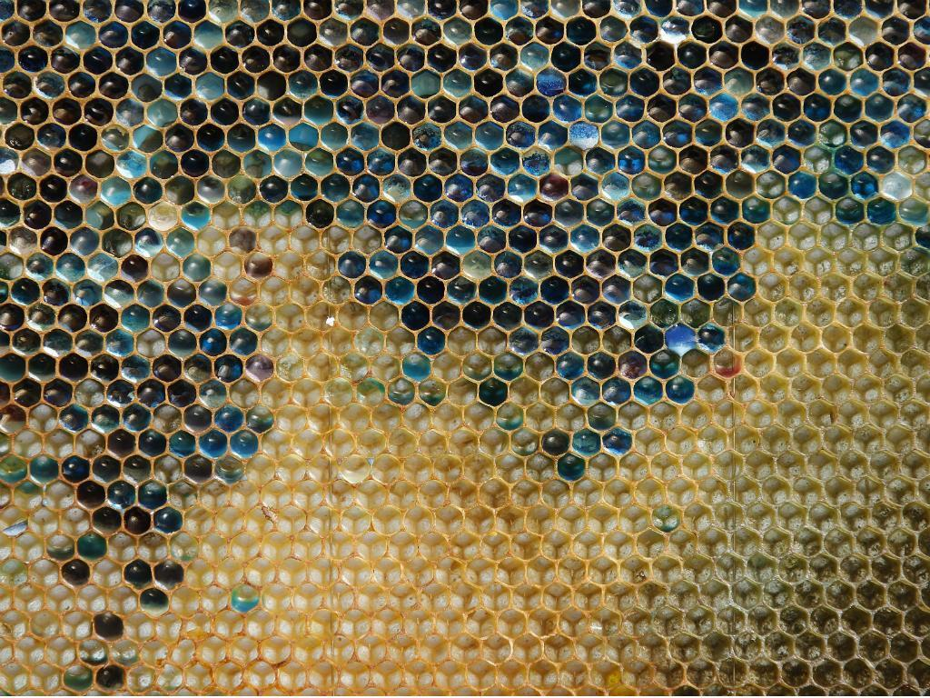 M&M's tornam mel colorido