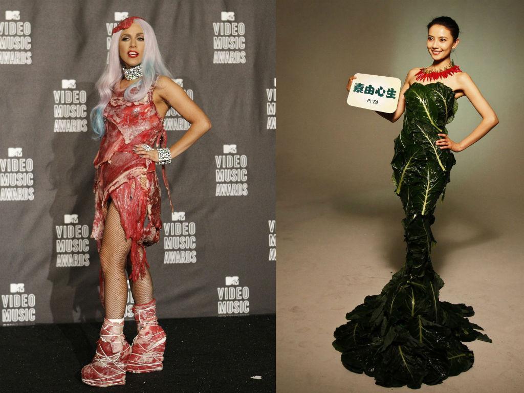 Vestido Em Carne Viva De Lady Gaga Em Exposição Tvi24