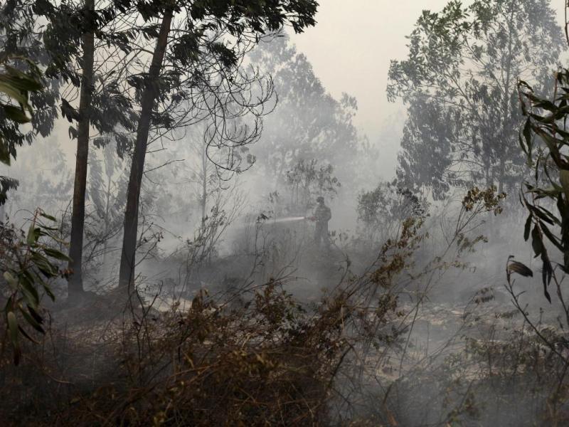 Exército combate incêndios (YT Haryono/Reuters)