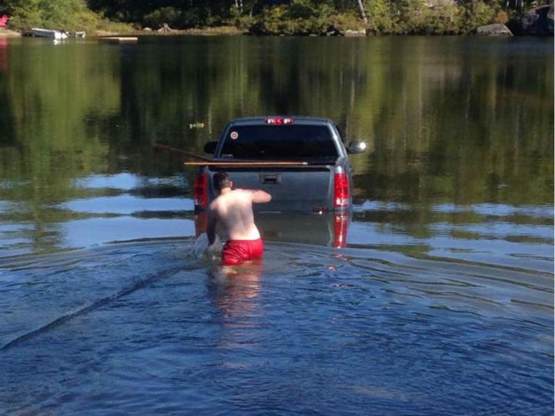 Cão conduz carro até ao lago