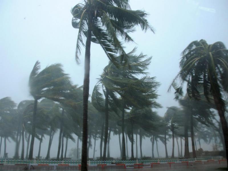 Tufão Mujigae