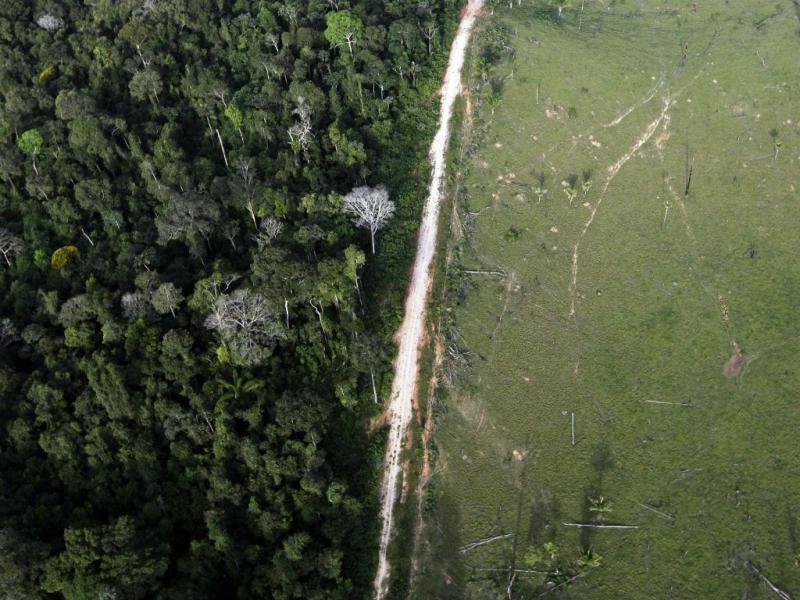 A Amazónia como nunca a viu