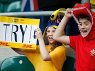 Adeptos mundial râguebi 2015 (REUTERS)