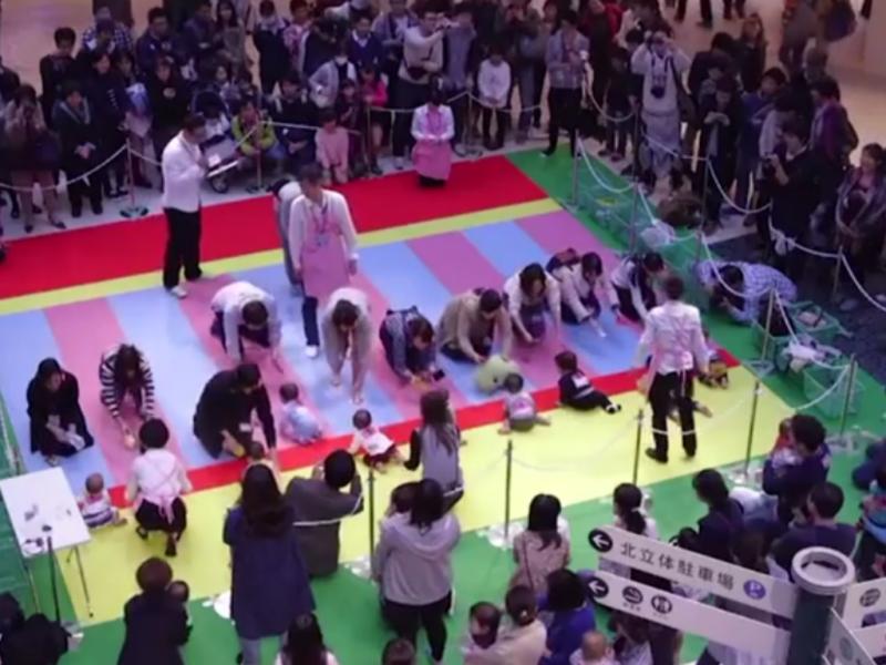 Bebés gatinham numa competição (Reprodução youtube)