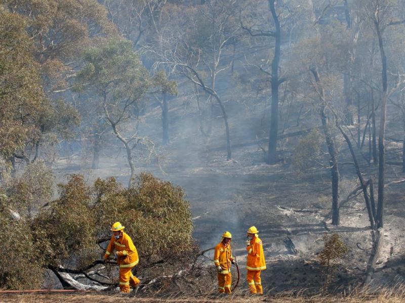 Austrália: incêndios obrigam a evacuar povoações