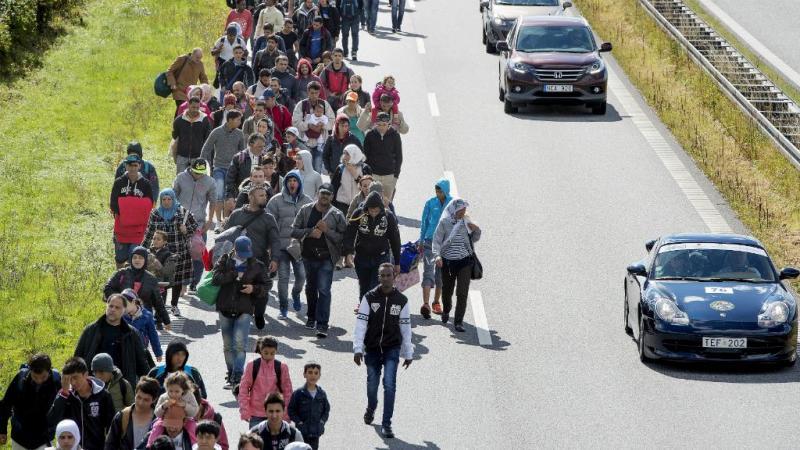 Um grande número de refugiados caminha pela autoestrada na chegada à Dinamarca, em setembro de 2015