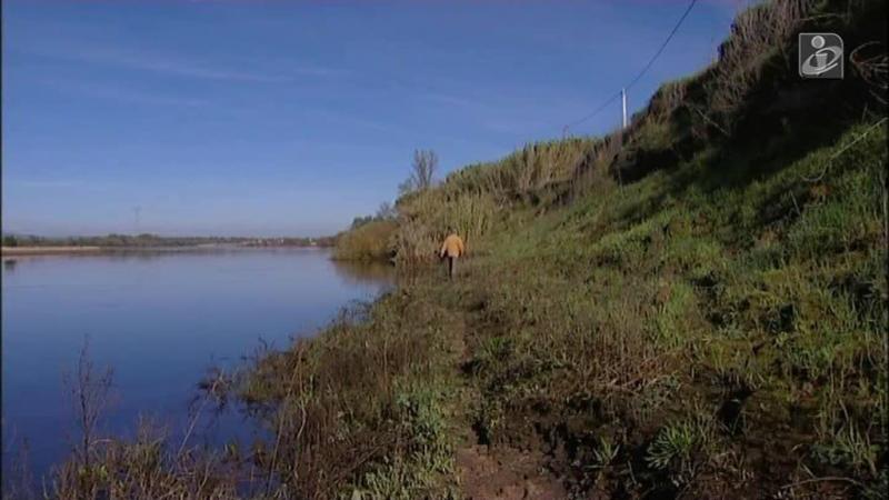 Cheias no Ribatejo: Agricultores preocupados com os rombos nas margens do Tejo