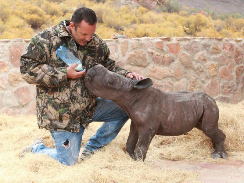 Rinoceronte bebé adotado por reserva na África do Sul (Facebook)