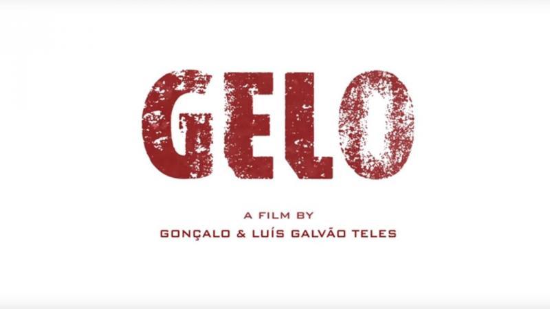 Gelo, de Gonçalo Galvão Teles e Luís Galvão Teles
