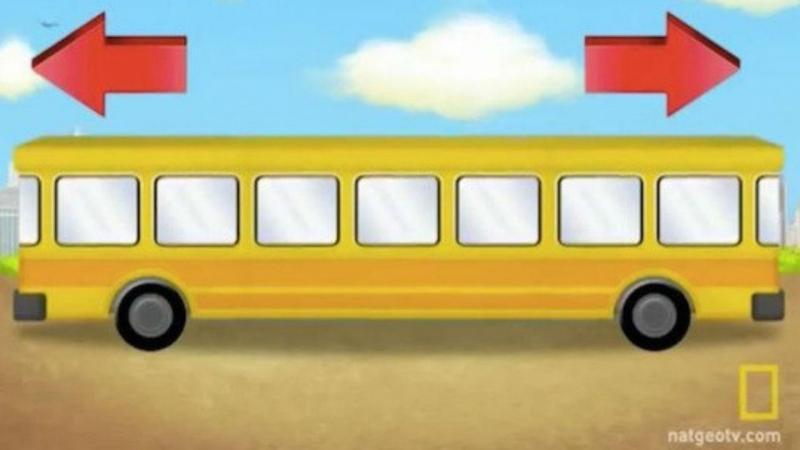 Autocarro (Reprodução Twitter)