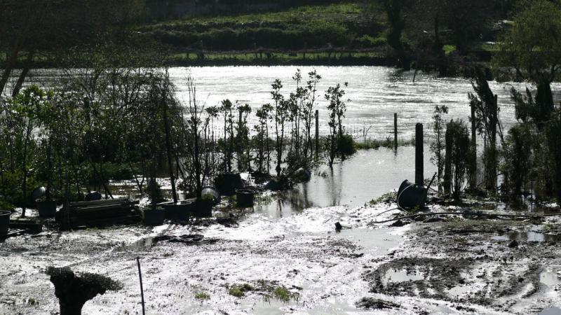 Rio Ave castiga os campos com as forças da água