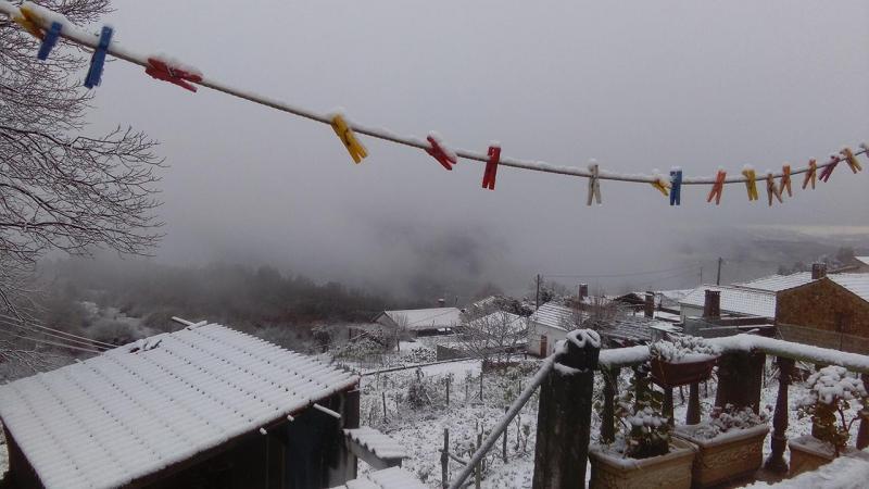Nevão na Serra de Vila Nova Miranda do Corvo (EU VI / Ana Mendes)