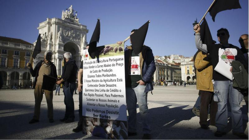 Suinicultores fazem protesto em Lisboa