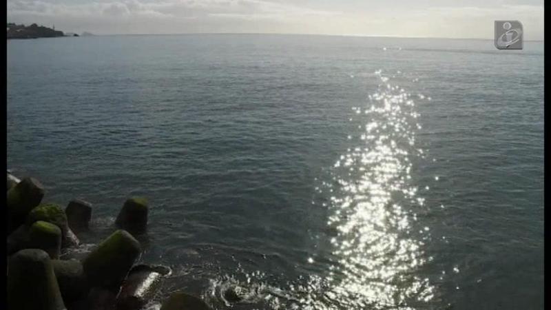 Resgate insólito: turista tentava chegar a nado a navio de cruzeiro