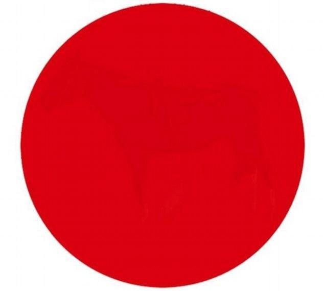 Consegue ver alguma coisa neste círculo vermelho?