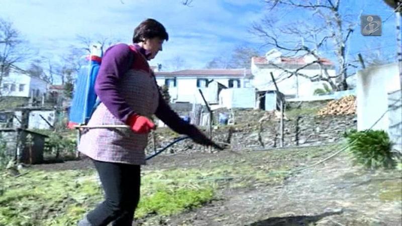 Agricultores têm até 31 de maio para completar formação sobre pesticidas