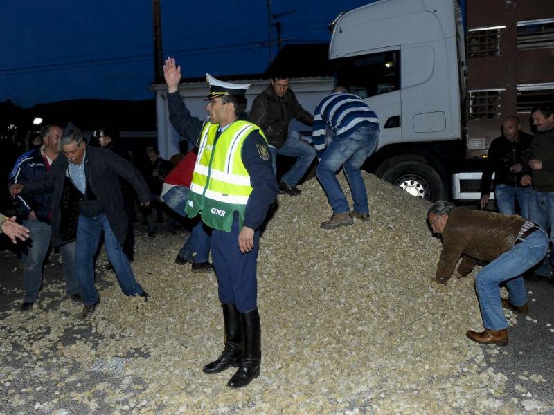 Suinicultores em protesto despejam brita na estrada