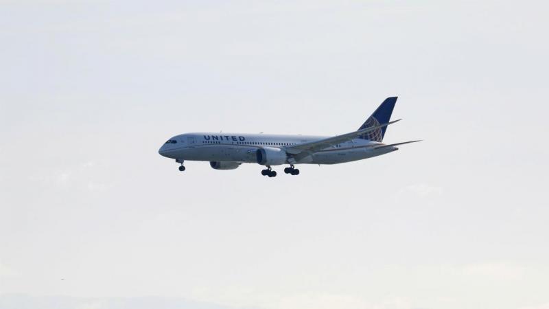 Boeing 787 [Foto: Reuters]